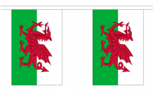 WALES BUNTING - 18 METRES 30 FLAGS